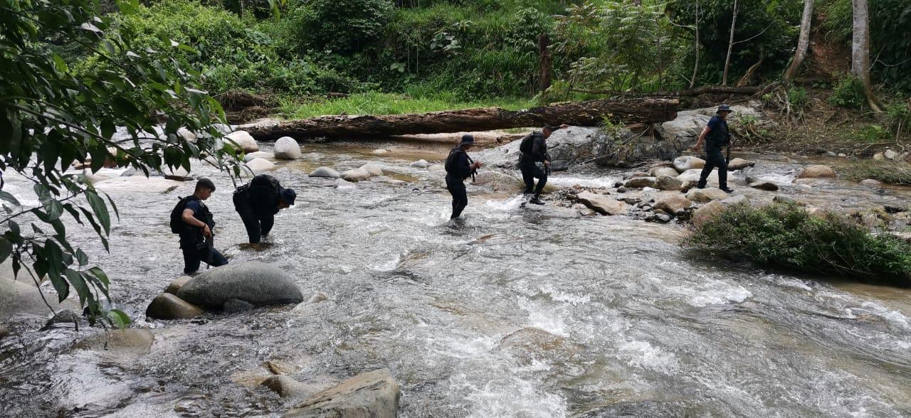 Policía Nacional erradica más de 15 mil arbustos de «coca» y un narcolaboratorio