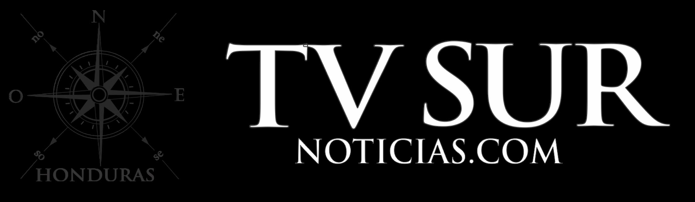 Tv Sur Noticias